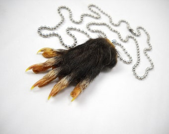 Possum Foot Necklace or Key chain Real Paw Taxidermy opossum small bones, claws, and skin talisman
