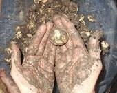 Open Pollinated and Heirloom Big Max & Cinderella Pumpkins - 10 Soil Seed Bombs - Custom Order Friendly