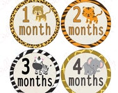 Neutral Monthly Baby Stickers, 1 to 12 Months, Monthly Bodysuit Stickers, Baby Age Stickers,  Safari (037-1)