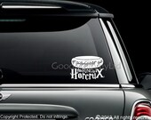 "Harry Potter / Lord of the Rings Combo Mash Up Decal - ""This RING is a HORCRUX"" Vinyl Sticker"