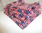 Cloth Napkins USA Flag print