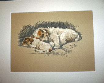 Vintage Mounted Signed 1936 'Mac' Lucy Dawson Sealyham terrier puppy dog plate print Ideal Unique gift