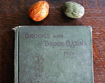 Antique Geography Book, Antique Science Book, Vintage Nature Book, Historical Book, Brooks and Brook Basins, Alex Everett Frye, 1890's,