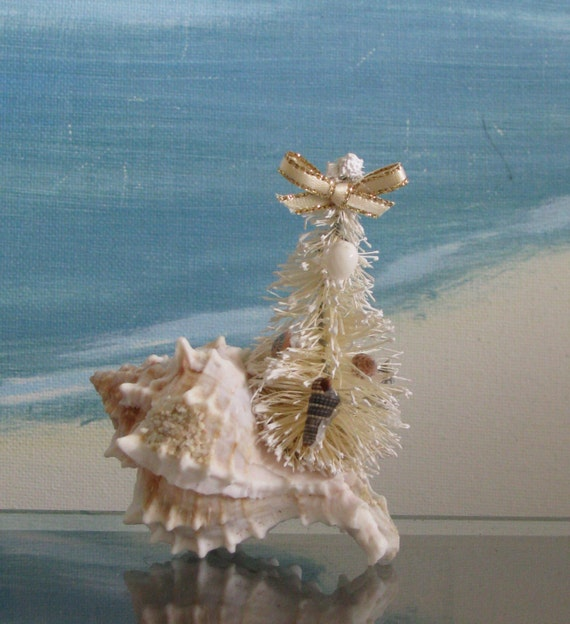 Little Seashell Christmas Tree In A Conch By Ceshoretreasures
