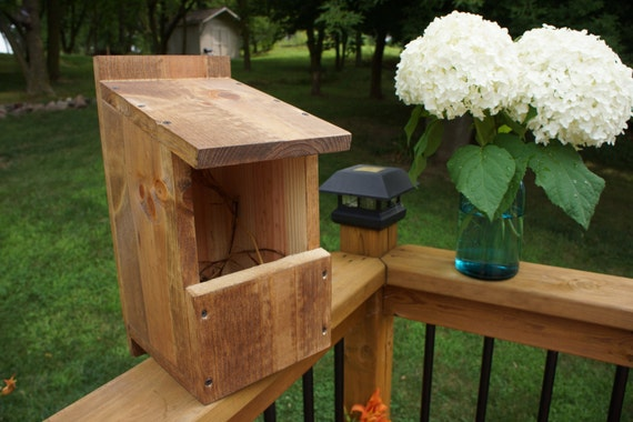 Items similar to robin cardinal box bird house on etsy for Types of birdhouses for birds