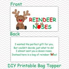 Christmas Reindeer Noses - Personalized DIY Christmas Printable Bag ...