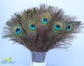 100pcs Real, Natural Peacock Feathers about 10-12 Inches High Quality
