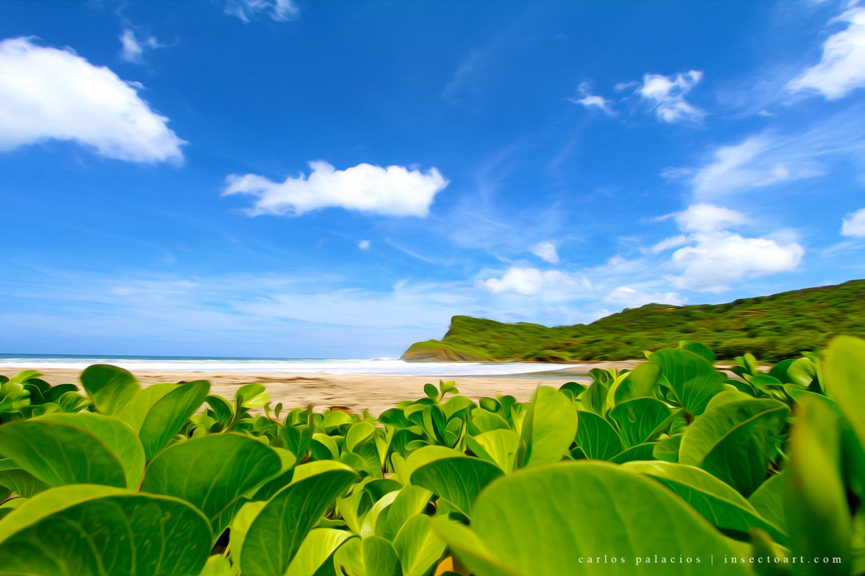 nature photography 8x10 print yoga art sand ocean art