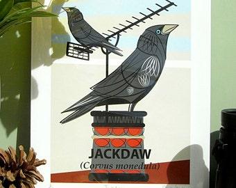Small Limited Edition Jackdaw (Corvus monedula) Giclée Print