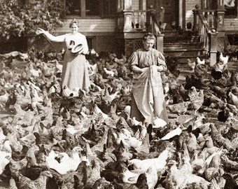Chickens Fill Yard in NJ Women Surrounded Repro Fabric Block from Vintage Photo