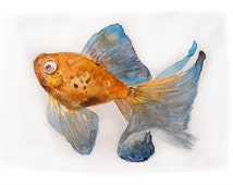 Watercolor painting original. Fish painting. Small watercolors 7,5 by 11 inches. Wall art