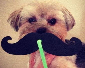 FOAM mustache straws - FREE SHIPPING!
