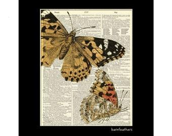 Butterflies Dictionary Art Page Antique Dictionary Art Print Book Page Art Home Decor No. P256