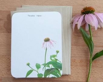 Echinacea Personalized Stationary Set OF Note Cards