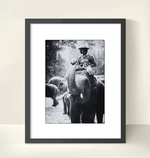 Mahout and Elephant. Thailand. Endangered Animal. Travel Photography. Black & White Print by OneFrameStories.