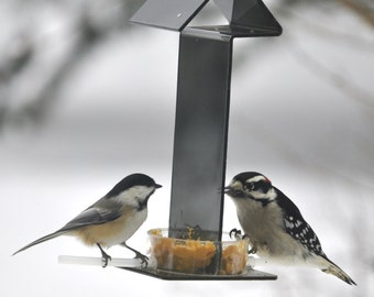 Peter's Feeders PB-31 Peanut Butter Feeder: Give your birds a healthy and delicious treat without the mess.