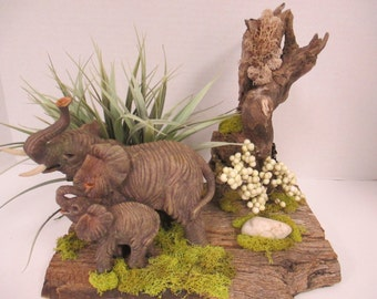 Floral  arrangement Wild life Diorama on barn wood with mama elephant and baby 0n driftwood ooak