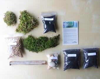 Zen Moss Terrarium DIY - (For Large Terrariums) Live NC Moss, Stone, Charcoal, Pebbles, Soil,  DIY, Terrarium Kit, Modern, Garden, Woodland