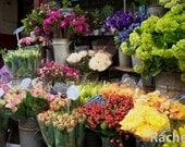 Paris Flower Market. Photo of a colorful flower market in Paris. Paris, France, Europe, flowers, floral, bouquets, euro, canvas limited.
