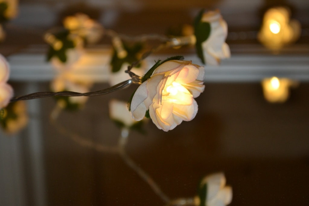 Pink String Lights For Bedroom : 20 Ivory and pink Rose Flower Fairy string warm white LED