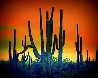 "SunsetCactus by DeDaCreations 8"" x 10"" Photographic Art Print"