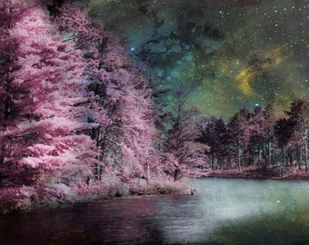 Art, Photography, Enchanted, Wall Art, Home Decor, Woodland, Pink ,Trees, Stars, Enchanted Earth, Starry Night, Dreamy, Night Sky, Magical