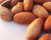 Raw Cacao Beans 1 lb Organic Fair-Trade