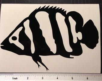 Datnoid Siamese Tiger Fish Vinyl Decal Sticker Aquarium FREE SHIPPING