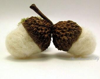 White Felted Acorns, Double, Post Oak Acorns