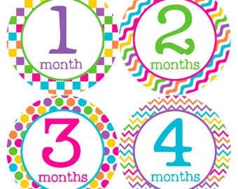 Monthly Baby Stickers Baby Month Stickers Baby Girl Month Stickers Monthly Photo Stickers Monthly Milestone Stickers 199