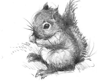 Instant Download. Little Baby Squirrel Guy. DIY Iron On Transfer Art. Digital Art. Printable Art.