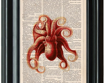 Vintage Squid dictionary art print book page antique vintage dictionary print wall Octopus