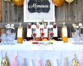 mimosa bar wedding, shower or party drink station labels and signs- complete set of printable files