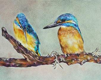 Kingfishers Original Colored Pencil Bird Drawing, Realistic Drawing  5.5x8 Inch