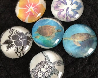 Glass magnets set of 6 in fun Hawaii theme with turtles and hibiscus flowers