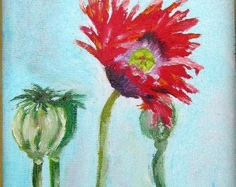"""Poppy, Original Oil Painting, 5"""" x 7"""", 13cm x 24cm"""