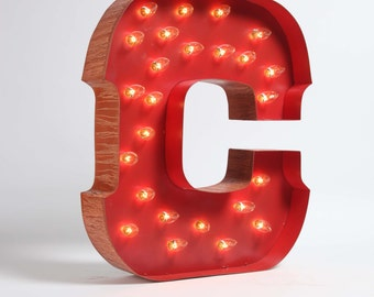 Awesome Whimsical lighted carousel letter C.  includes lights, a teeny assembly process.  safe for outdoor or indoor use!