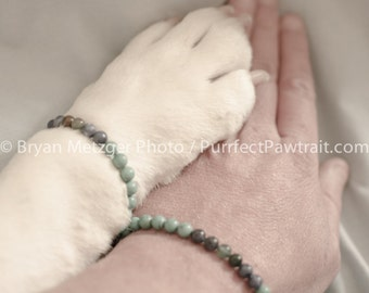 Friendship Bracelet English Bulldog Print, Fine Art Photography Print, Purrfect Pawtrait Pet Photography, Animal Photography