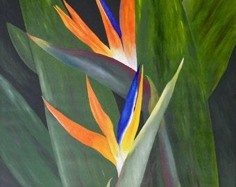 """Bird of Paradise Oil Painting, Flower Oil Painting, Original Oil Painting, Flower - """"Paradise Heaven"""" (24"""" x 30"""")"""