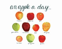 An Apple a Day - ORIGINAL Chart of Favorite Apples- HandPainted Watercolor & ink, Hand-Lettered Typography. Kitchen art, wall decor. 8x10.
