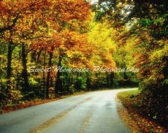 Autumn Drive- Landscape print