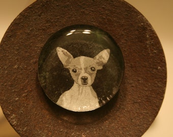 Unique Chihuahua Glass Magnet