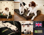 The Ferndale woofy cushion from 4legsonline( Large 100cmx80cm)- specialists in custom dog beds.