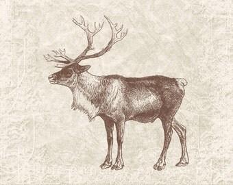 Digital Christmas Reindeer - Vintage Christmas Antlers Reindeer Silhouette Caribou Clipart Printable -  Illustration INSTANT DOWNLOAD