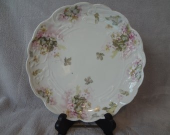 Bauer, Rosenthal and Co. decorative plate