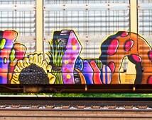 Train art: Food Hallunication. 2735 x 1871 px train graffiti image for downloading. Photographed by Frank Heflin