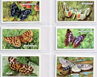 British Cigarette Complete Card Set (48 Cards) - Butterflies and Moths Issued in 1938 by Gallahar Ltd Cigarettes. Superb Coloured Cards