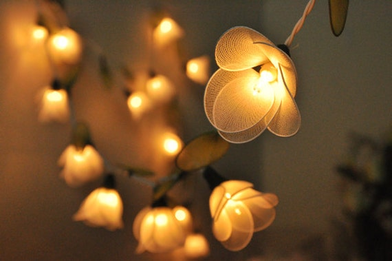 Guinness Party String Lights : 20 White Flower String Lights for Party Wedding and