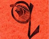 Quail Q Monogram Linocut - Alphabet Typographical Lino Block Print  with Animals - Q is for California Quail