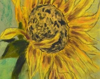 Sunflower Art Flower Pastel Drawing Framed By Cori Solomon